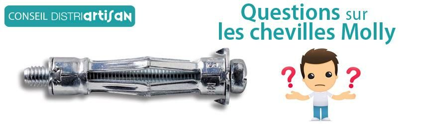 Questions Sur Les Chevilles Molly  Distriartisan